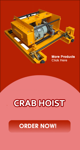Crab Hoist, Crab Hoist Manufacturers, Crab Hoist Suppliers, Delhi, India